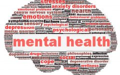 Mental Health at Friends Academy