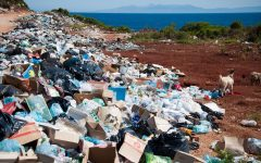 The World's Plastic Epidemic