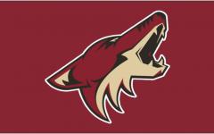 The Organizational Struggles of the Arizona Coyotes