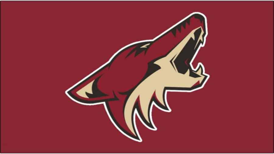 The Organizational Struggles of the Arizona Coyotes